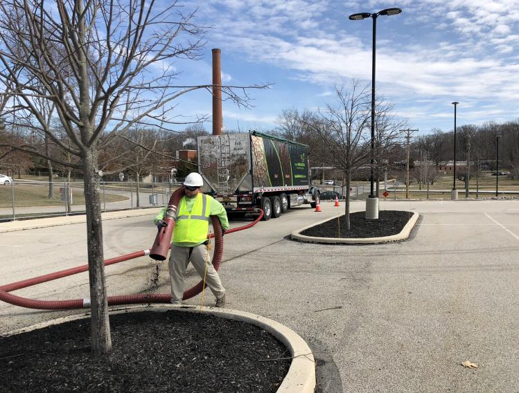 Male worker blowing mulch in car lot
