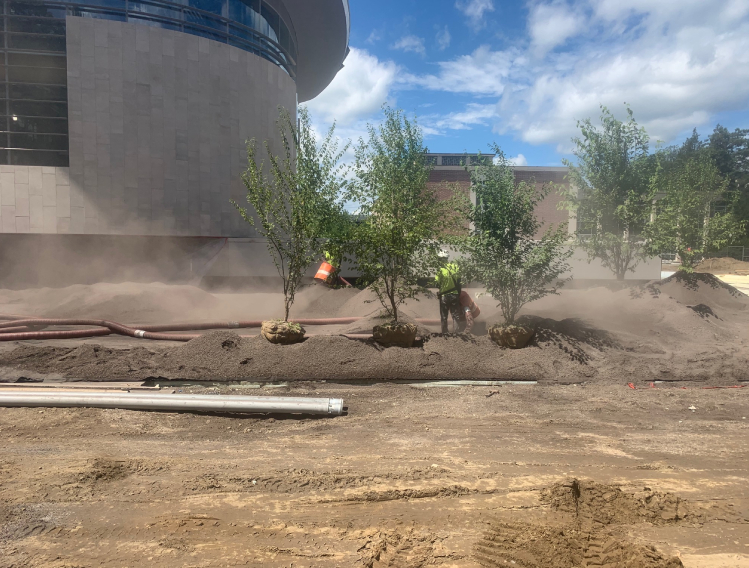 Worker blowing mulch with single trees